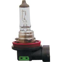 CandlePower - 48078 - H-11 Bulb, Long Life