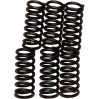 Kaw KDX KX, Suz DS80, Yam TT (select 79-04) Clutch Spring Kit EBC CSK1